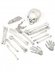 Decoración hueso y cráneo de esqueleto luminoso 18 piezas