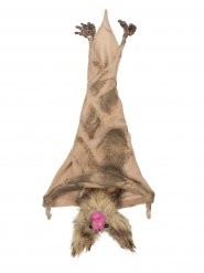 Murciélago para colgar marrón 35 cm Halloween