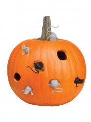 Kit decoración de calabaza ratón Halloween 8 piezas