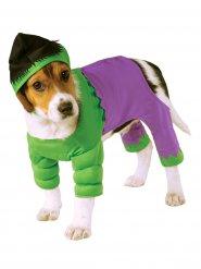 Disfraz para perro Hulk™