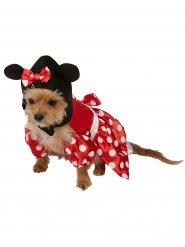 Disfraz para perro Minnie Mousse™