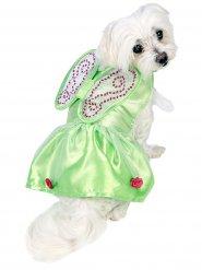 Disfraz para perro Campanilla™