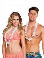 25 Collares hawaianos blancos