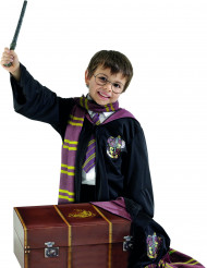 Disfraz Harry Potter™ niño cofre