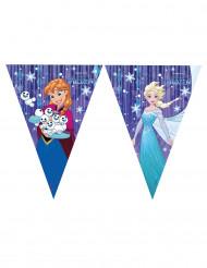 Guirnalda banderines Elsa Frozen ™