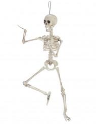 Decoración esqueleto articulado 48 cm