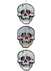 Decoraciones colgantes 3 calaveras 55 cm Día de los muertos.