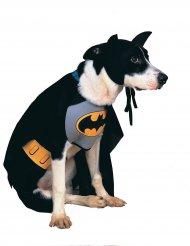 Disfraz para perro Batman™