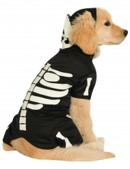 Disfraz para perro esqueleto fosforescente
