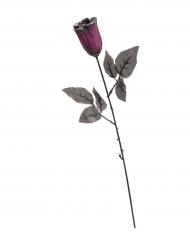 Rosa negra violeta purpurina