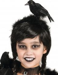 Diadema cuervo adulto y niño