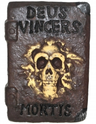 Libro hechicero 30 x 21 cm