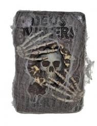 Libro hechicero con telaraña 30x20 cm
