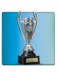 Trofeo plateado 24 cm