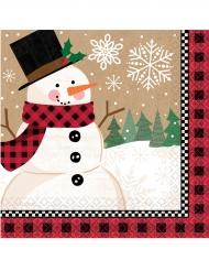 16 Servilletas pequeñas de papel muñeco de nieve 25 x 25 cm