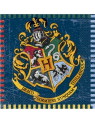 16 Servilletas de papel Harry Potter™ 33 x 33 cm