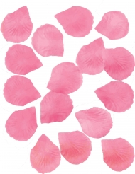 288 Pétalos de rosas fucsia