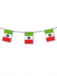 Guirlanda plástico México 5m