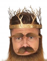 Corona rey medieval oro adulto