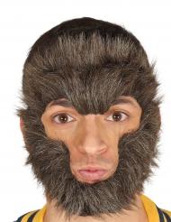 Pelo para rostro hombre lobo adulto