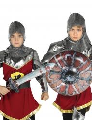 Espada y escudo inflable niño