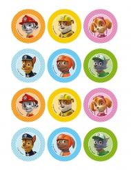 12 Decoraciones de azúcar para galletas Paw Patrol™ 5 x 8 cm