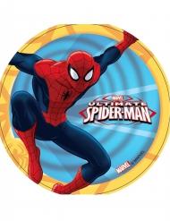 Disco ácimo Ultimate Spiderman™ 14.5 cm