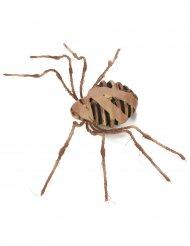 Araña momia 75 cm