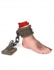 Pie ensangrentado con cadena