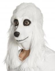 Máscara de látex caniche blanco adulto
