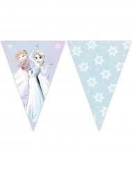 Guirlanda 9 banderolas Frozen™ 2,3 m x 25 cm