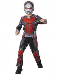 Disfraz clásico hombre hormiga Ant Man™ niño