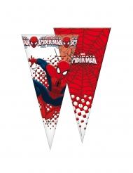 6 Bolsas con forma de cono Spiderman™20x40 cm