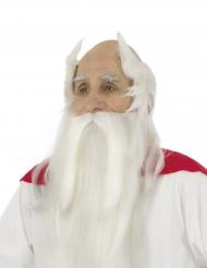 Peluca y barba Panoramix™- Astérix y Obélix™