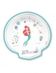 4 Platos de cartón concha premium Ariel™ 24 x 24 cm