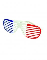 Gafas rayadas tricolor Francia