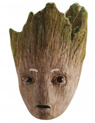 Máscara cartón Groot Avengers Infinity War™ adulto