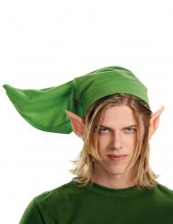 Kit Link adulto de La Leyenda de Zelda™