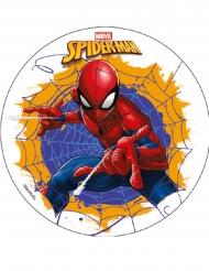 Disco oblea almidón Spiderman™ 18.5 cm