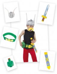 Kit 5 piezas Astérix™
