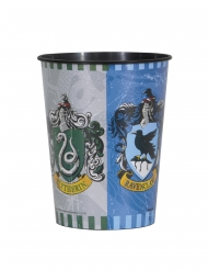 Vaso de plástico Harry Potter™ 473 ml