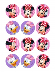 12 Decoraciones de Minnie™ para galletas 6 cm
