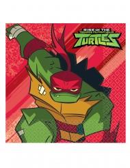 16 Servilletas de papel El destino de las Tortugas ninja™ 33 x 33 cm