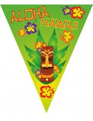 Guirnalda banderines Hawái 5 m