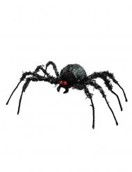 Araña gigante  43 x 46 cm