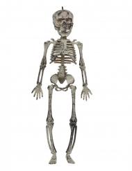 Decoración para colgar esqueleto 30 cm
