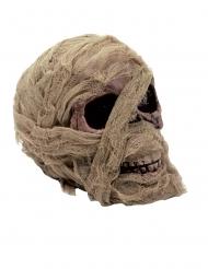 Calavera de momia 20 x 16 cm