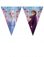 Guirnalda banderines Frozen 2™ 230 x 25 cm