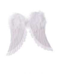 Alas de ángel blancas 42 x 46 cm