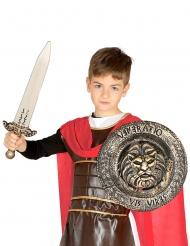 Set escudo espada niño